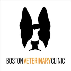 Boston Veterinary Clinic